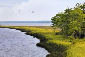 Fish River at Weeks Bay