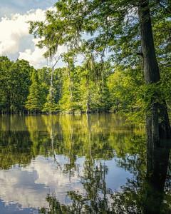 Graham Lake  Mississippi