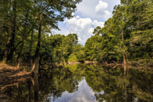 Lake   Upper Baldwin County, Alabama