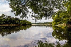 Pascagoula River