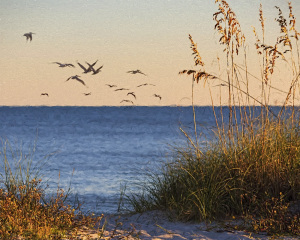 Painterly Beach