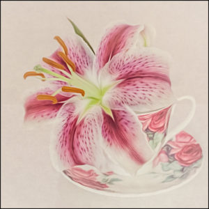 Stargazer in a Teacup